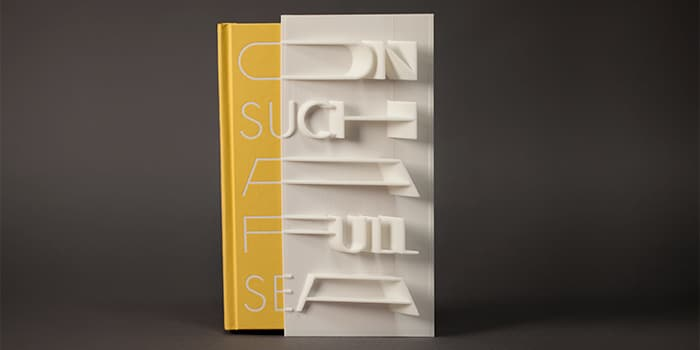 chang-rae-lee-3D-book-cover-slipcase