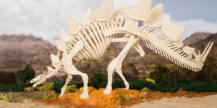 Download the Stegosaurus Skeleton at the MakerBot Digital Store!
