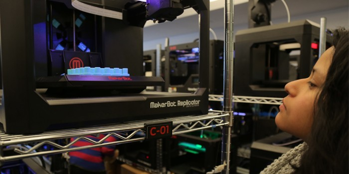 Strategies for Funding a MakerBot Innovation Center